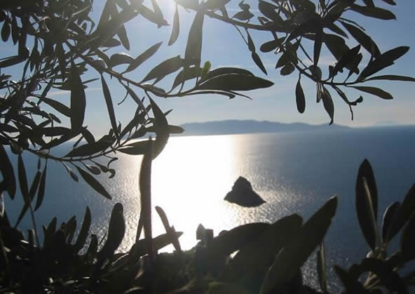 Argentario - vista dell'isola del giglio