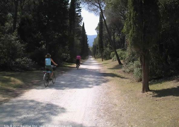 Orbetello - Riserva forestale