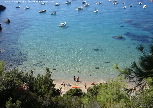 Cala del Gesso beach - Argentario