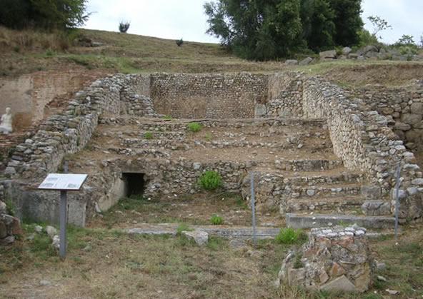 Roselle - Curia