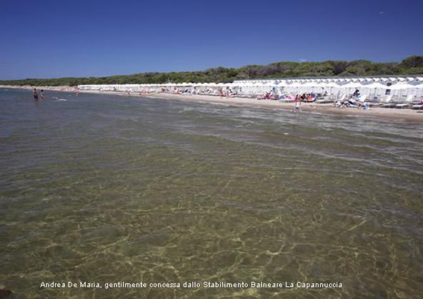 ansedonia beach