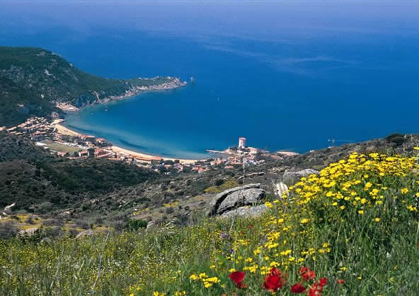 giglio island - Campese