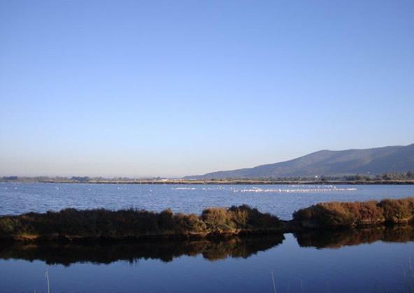 Laguna Orbetello