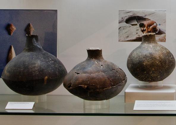 Museo di Preistoria e Protostoria della Valle del Fiora