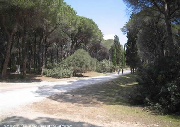 Orbetello - forest reserve