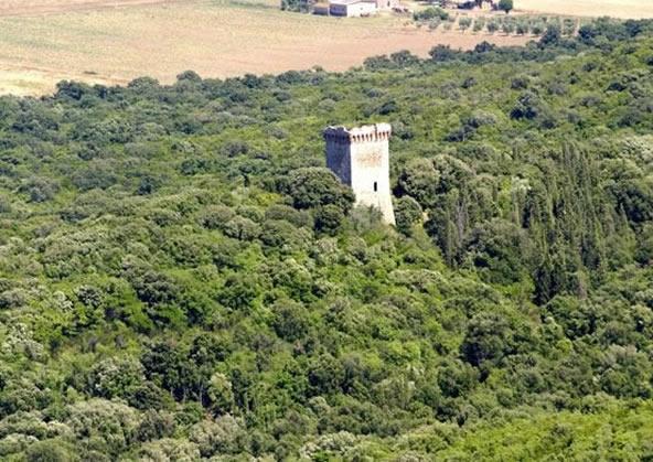 Parco naturale della Maremma - torretta